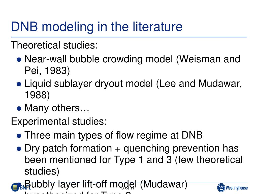 DNB modeling in the literature