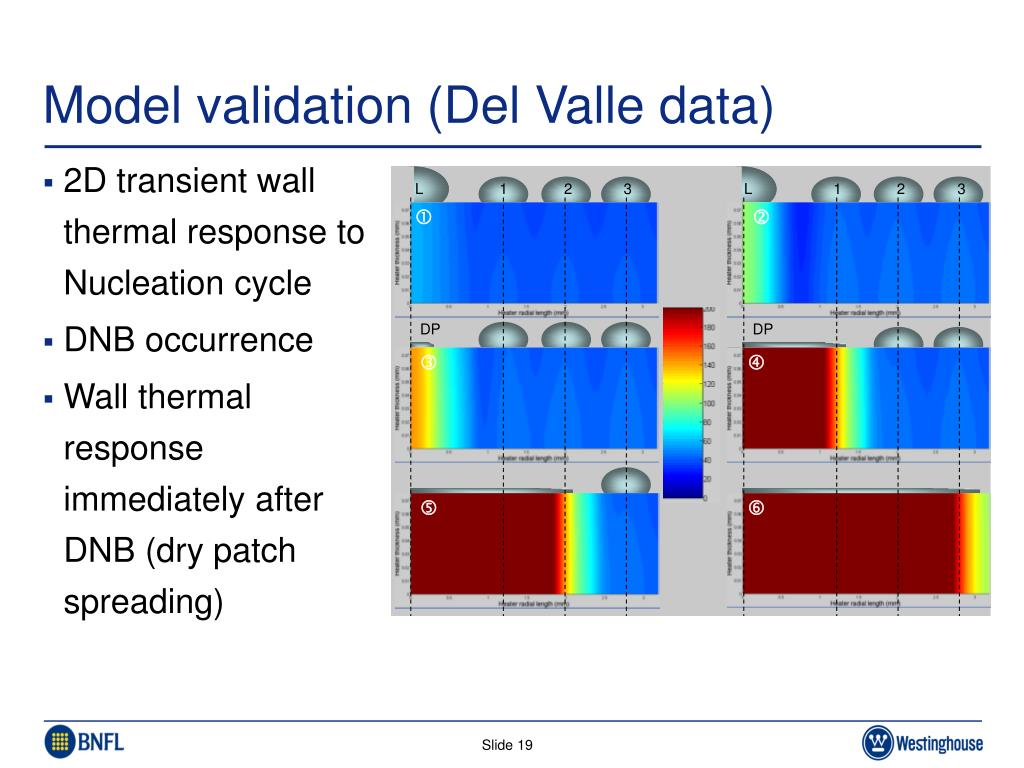 Model validation (Del Valle data)