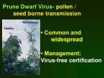 prune dwarf virus pollen seed borne transmission