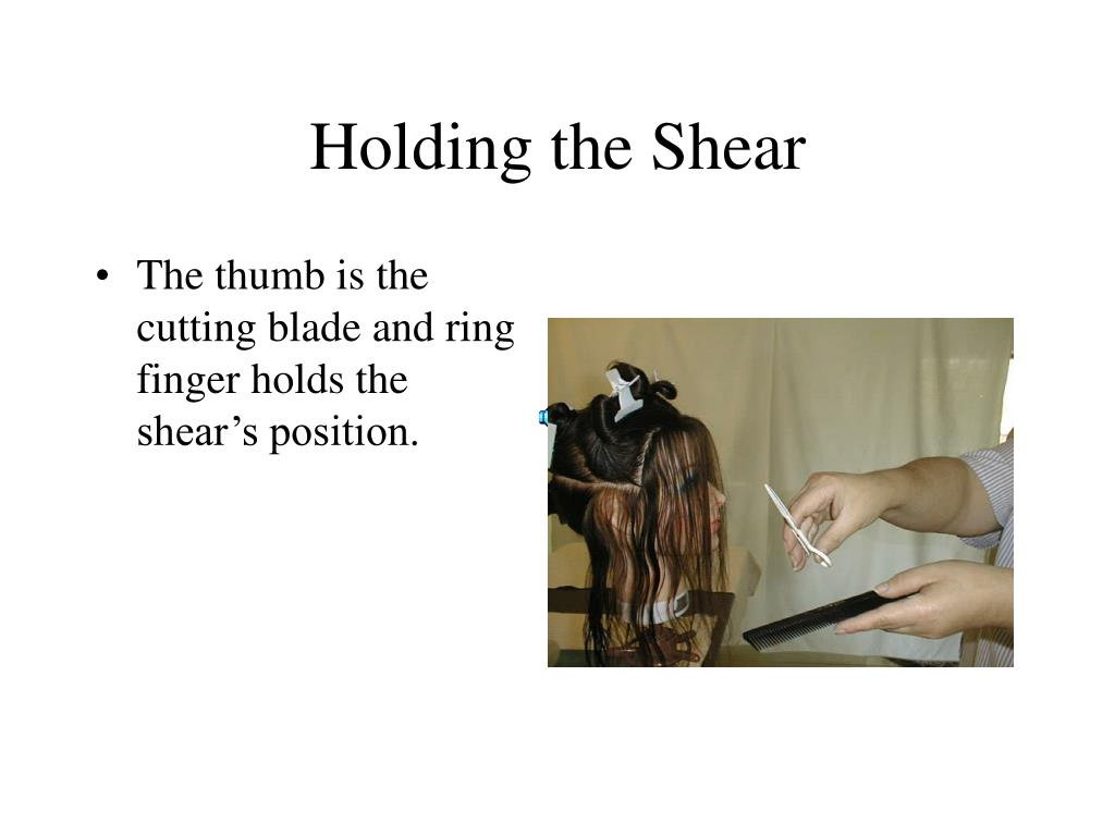 holding the shear l.