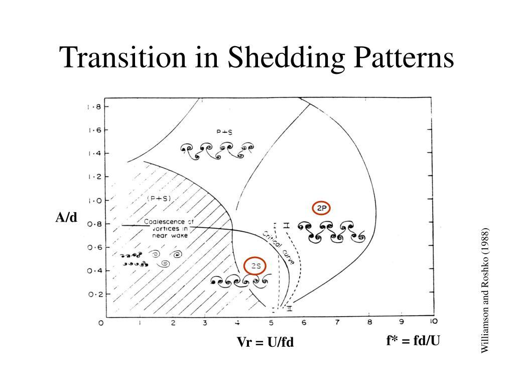 Transition in Shedding Patterns