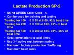 lactate production sp 2