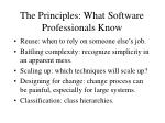the principles what software professionals know5