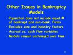 other issues in bankruptcy models