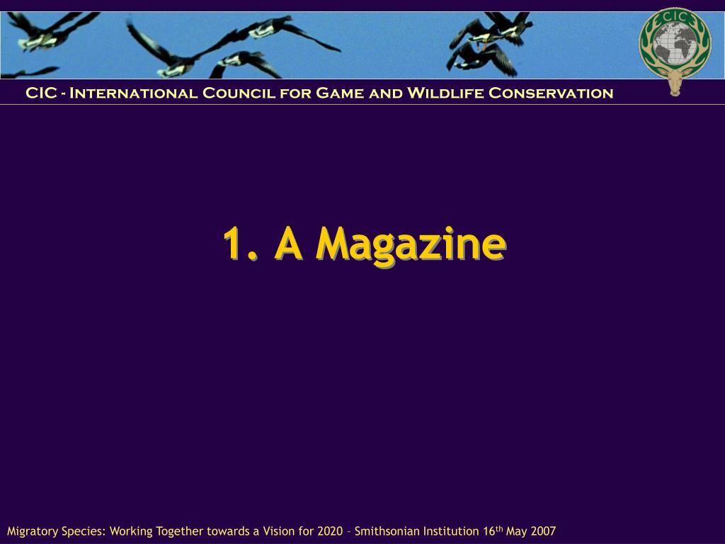 1. A Magazine