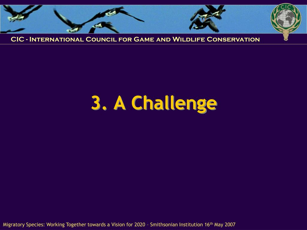 3. A Challenge