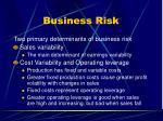 business risk48