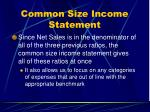 common size income statement