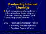 evaluating internal liquidity26