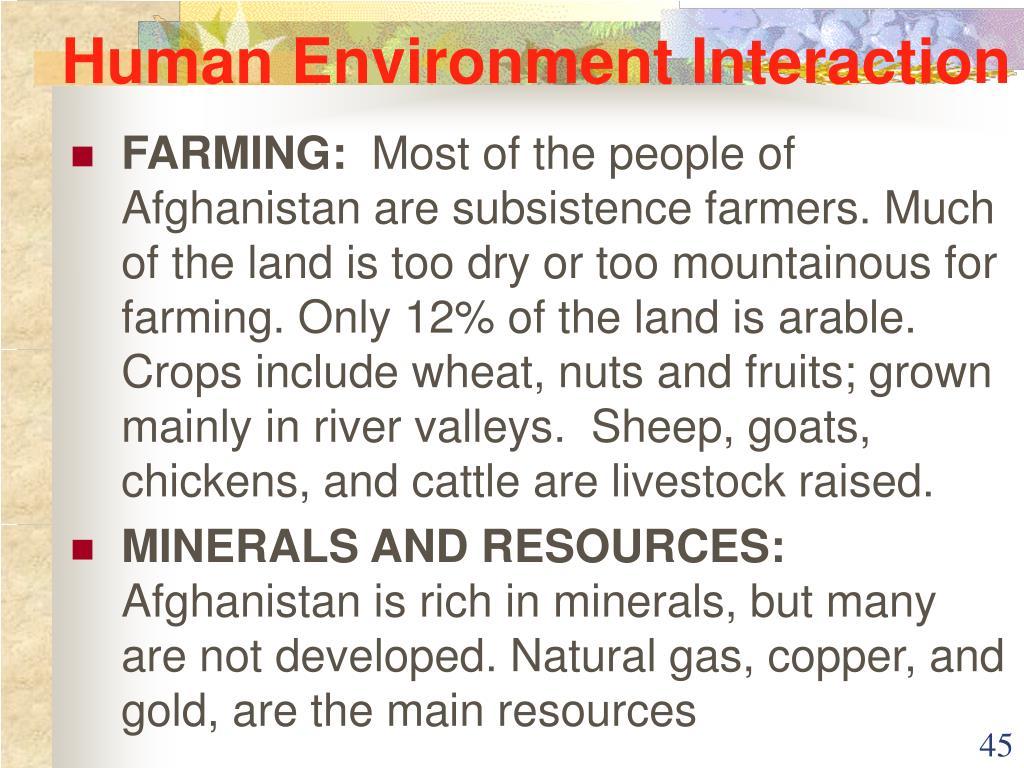 human environment interaction ccot