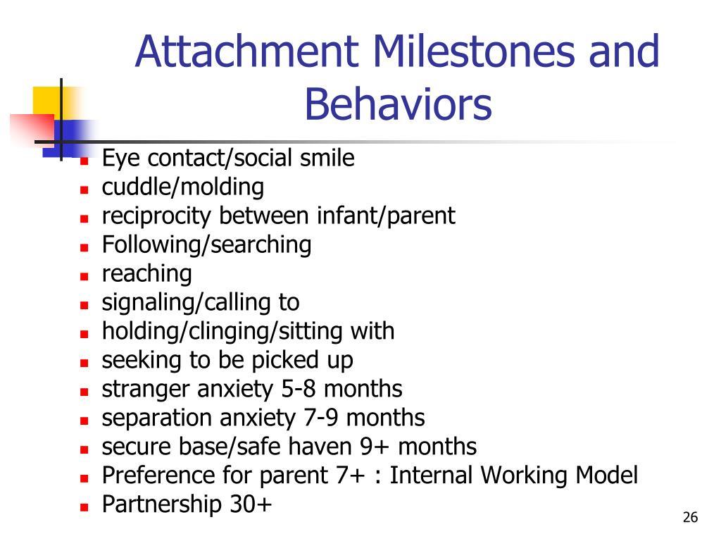 attachment behaviors