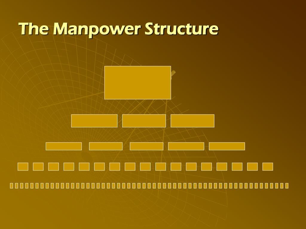 The Manpower Structure
