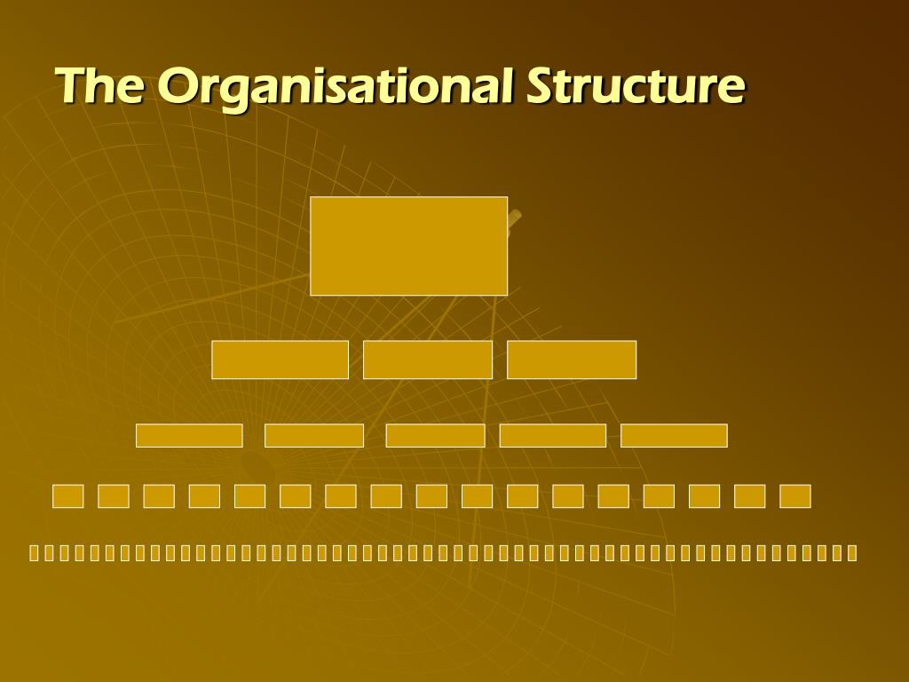 The Organisational Structure