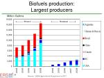 biofuels production largest producers