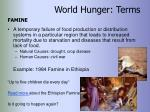 world hunger terms