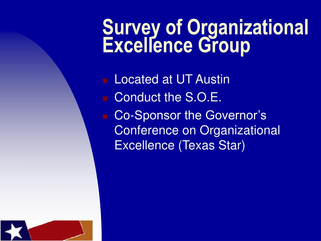 Survey of Organizational Excellence Group