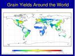 grain yields around the world