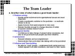 the team leader10