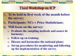 third workshop on icp