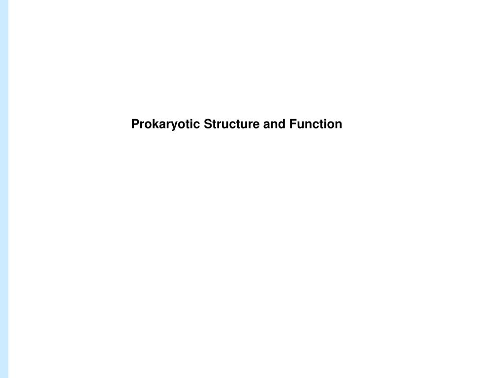 Prokaryotic Structure and Function