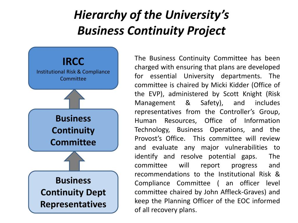 Hierarchy of the University's