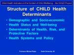 structure of child health determinants