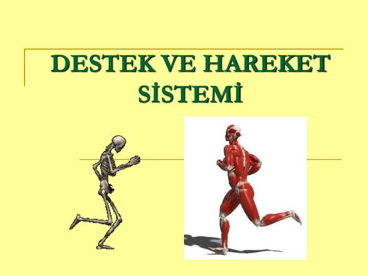 Total kalça protezi̇ öğr. Gör. Aysel abbasoğlu. Kas –iskelet sistemi.