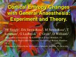 cortical entropy changes with general anaesthesia experiment and theory