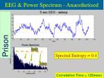 eeg power spectrum anaesthetised