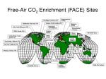 free air co 2 enrichment face sites