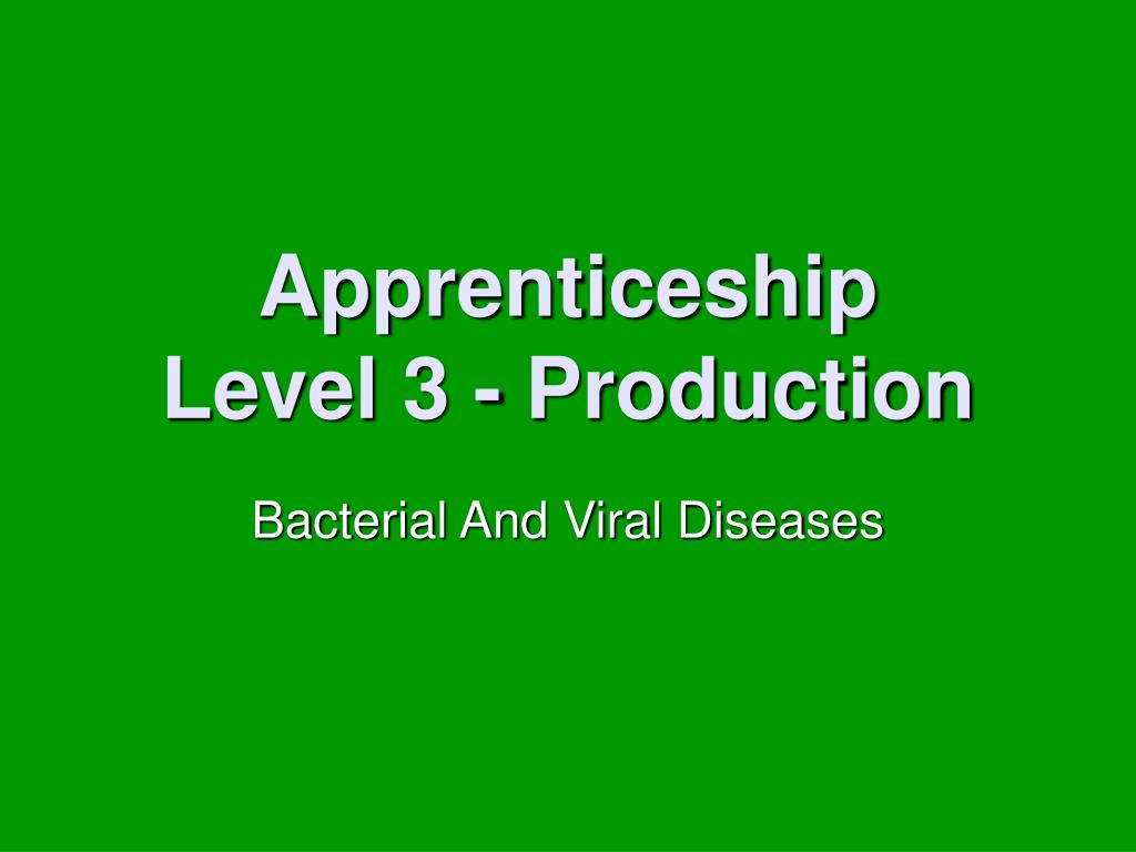 apprenticeship level 3 production l.