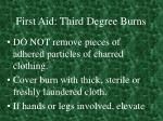 first aid third degree burns