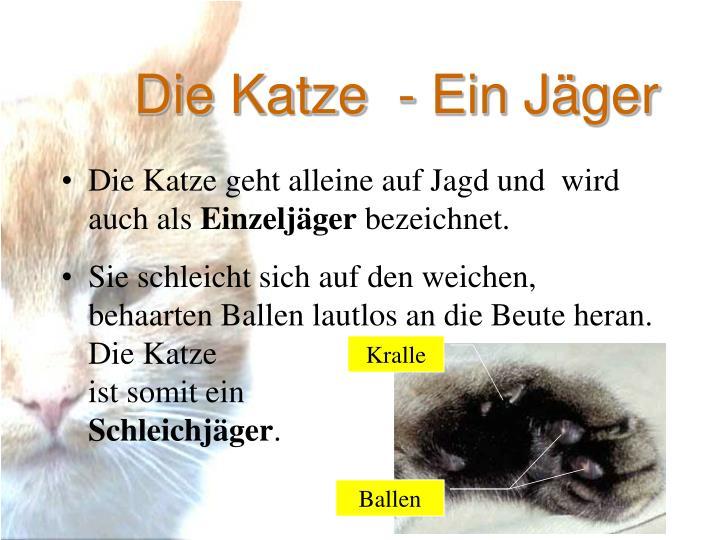 Schön Halloween Katze Farbseite Fotos - Dokumentationsvorlage ...