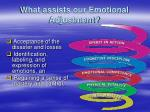 what assists our emotional adjustment