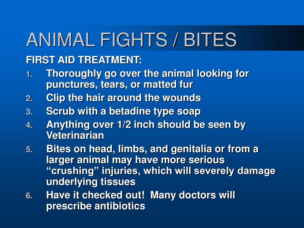ANIMAL FIGHTS / BITES