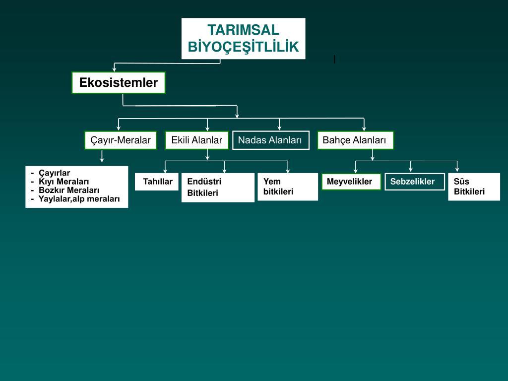 TARIMSAL BİYOÇEŞİTLİLİK
