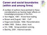 career and social boundaries within and among firms