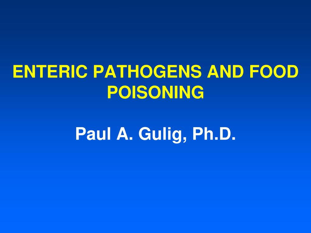 enteric pathogens and food poisoning paul a gulig ph d l.
