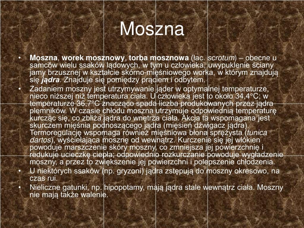Moszna