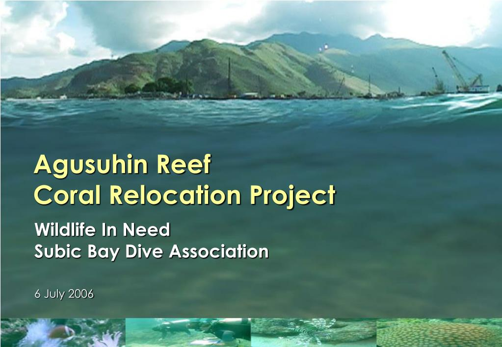 agusuhin reef coral relocation project l.
