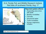 e g florida fish and wildlife research institute red tides off southwest florida aug 17