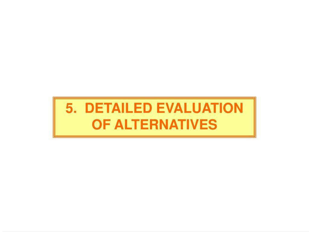 5.  DETAILED EVALUATION OF ALTERNATIVES