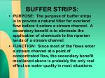 buffer strips