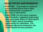 vegetated waterways