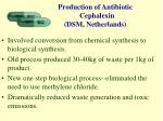 production of antibiotic cephalexin dsm netherlands