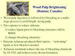 wood pulp brightening domtar canada