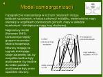 model samoorganizacji