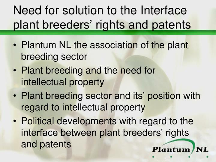 Need for solution to the Interface plant breeders' rights and patents