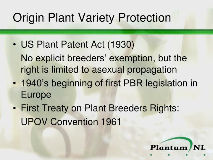 Origin Plant Variety Protection