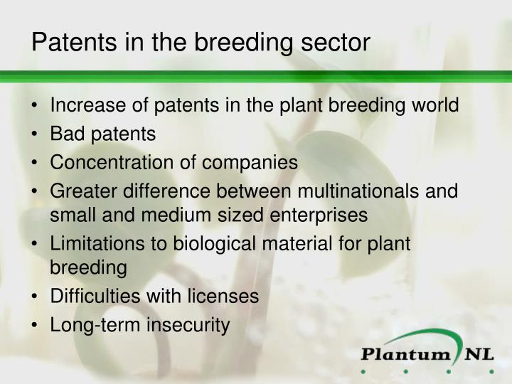 Patents in the breeding sector